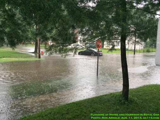 Image of flooded neighborhood street with trees, labeled as Royal Oak Aug. 11, 2014, taken by oc115.com